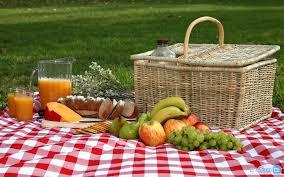 تغذیه در سفرهای نوروزی